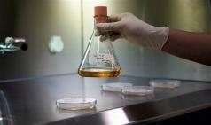 씨엘바이오, '간 손상 치료물질' 특허 취득